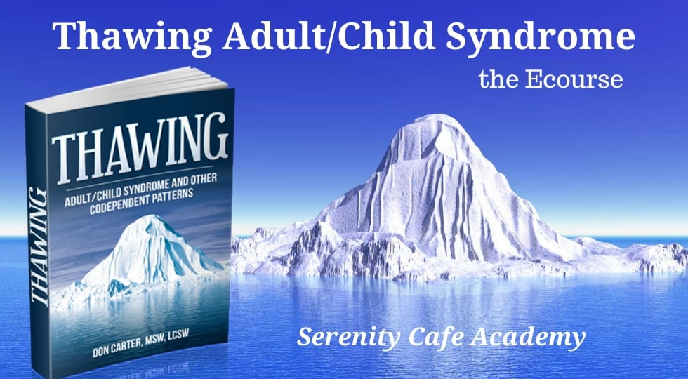 Thawing Adult Child Syndrome And Other Codependent Patterns Recovery Adult Children Of Alcoholics